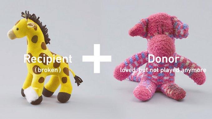 Il paziente e il donatore