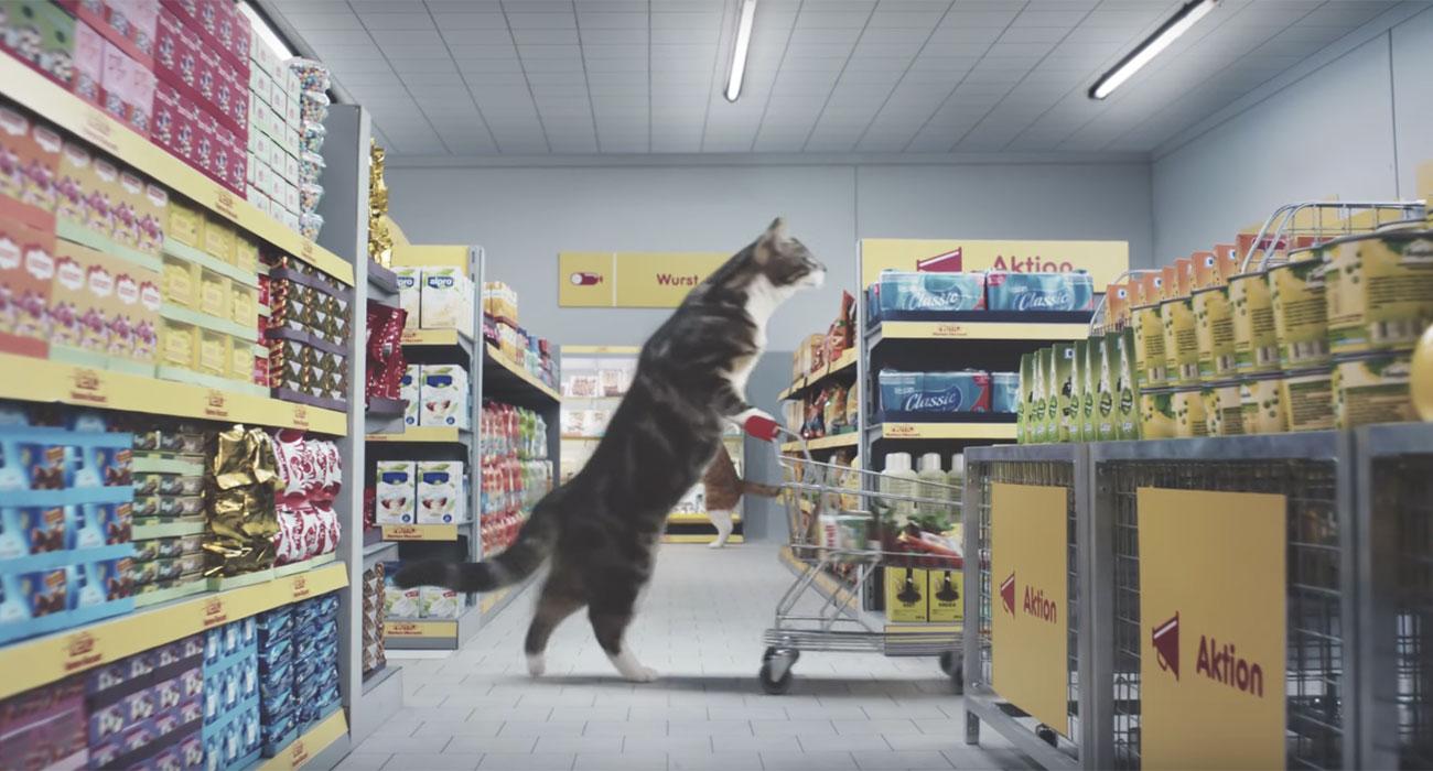 gatti-discount-spot