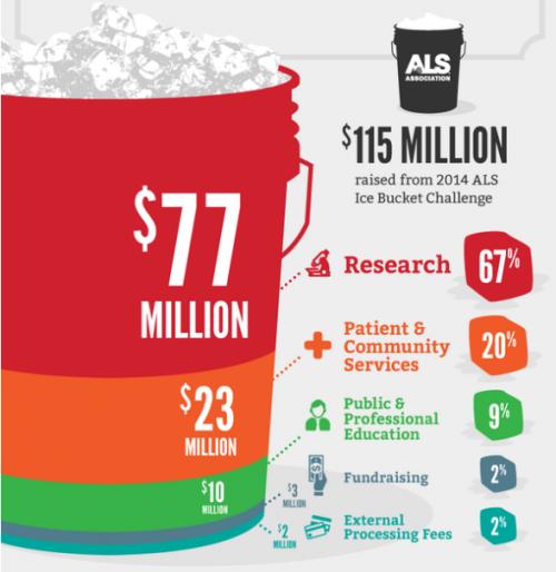 finanziamenti-raccolti-ice-bucket-challenge