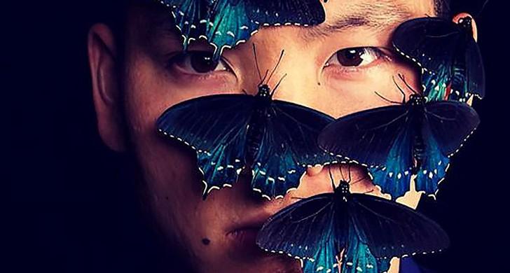farfalle estinte allevare