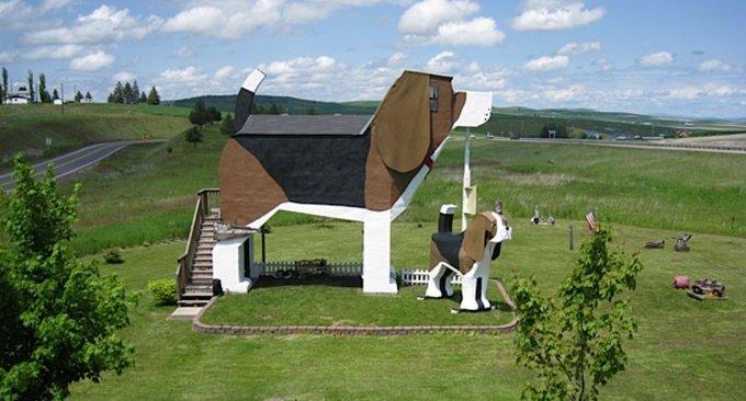 beagle-hotel