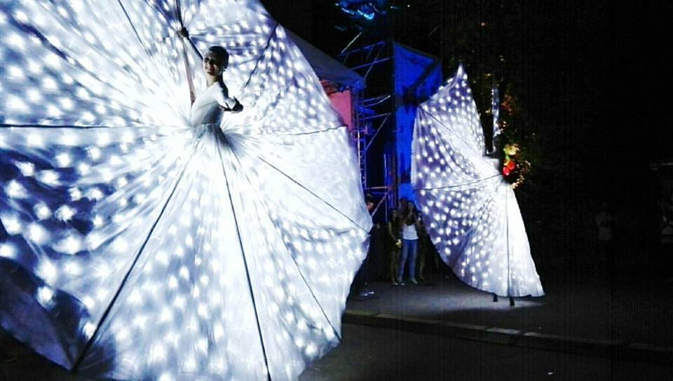 farfalle-luminose