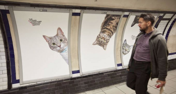gatti-metro
