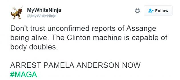 pamela-anderson-assange-1