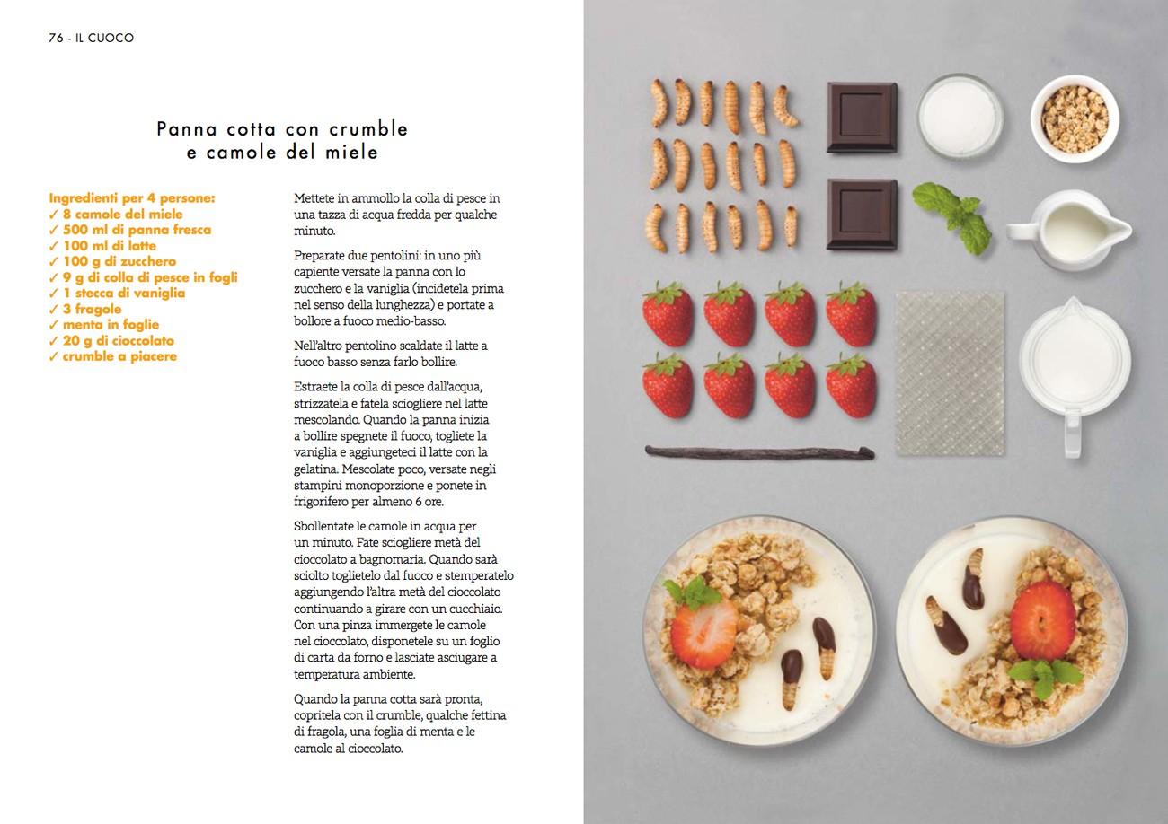 panna_cotta_camole insetto nel piatto libro ricette insetti