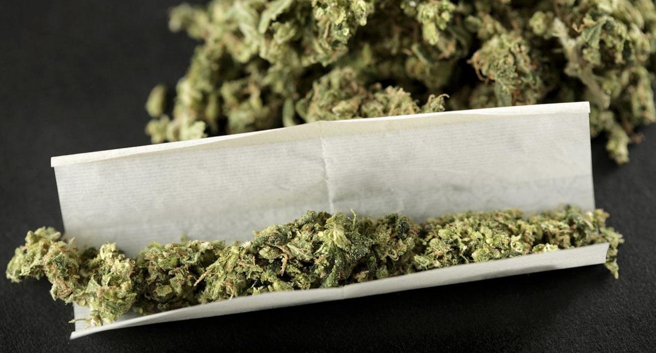 A cosa serve la marijuana legale che non sballa? Ecco tutte le risposte che cercate